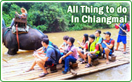All Thing to do in Chiangmai