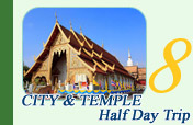 City and Temple Half Day Tour