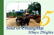 Soul of Chiangmai