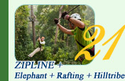 Zipline + Elephant + Rafting + Hill Tribe