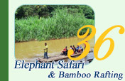 Elephant Safari and Bamboo Rafting